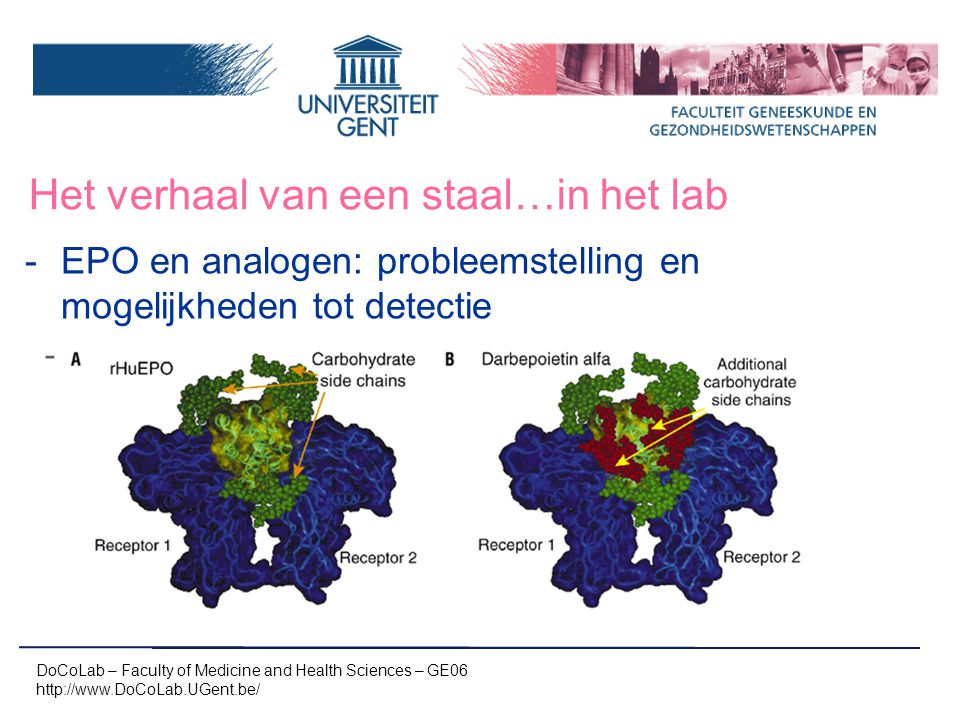 Het verhaal van een staal…in het lab -EPO en analogen: probleemstelling en mogelijkheden tot detectie - DoCoLab – Faculty of Medicine and Health Sciences – GE06 http://www.DoCoLab.UGent.be/