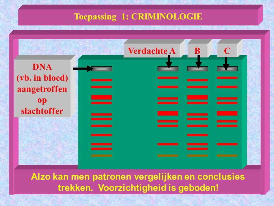 Alzo kan men patronen vergelijken en conclusies trekken. Voorzichtigheid is geboden! Toepassing 1: CRIMINOLOGIE Verdachte ABC DNA (vb. in bloed) aange