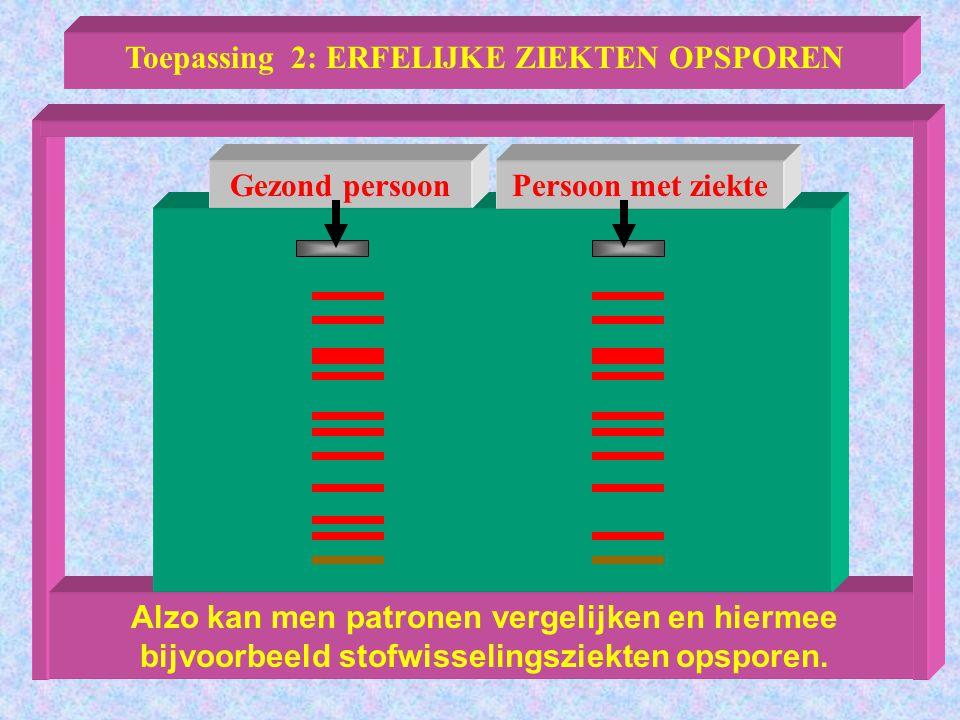 Alzo kan men patronen vergelijken en hiermee bijvoorbeeld stofwisselingsziekten opsporen. Toepassing 2: ERFELIJKE ZIEKTEN OPSPOREN Gezond persoonPerso