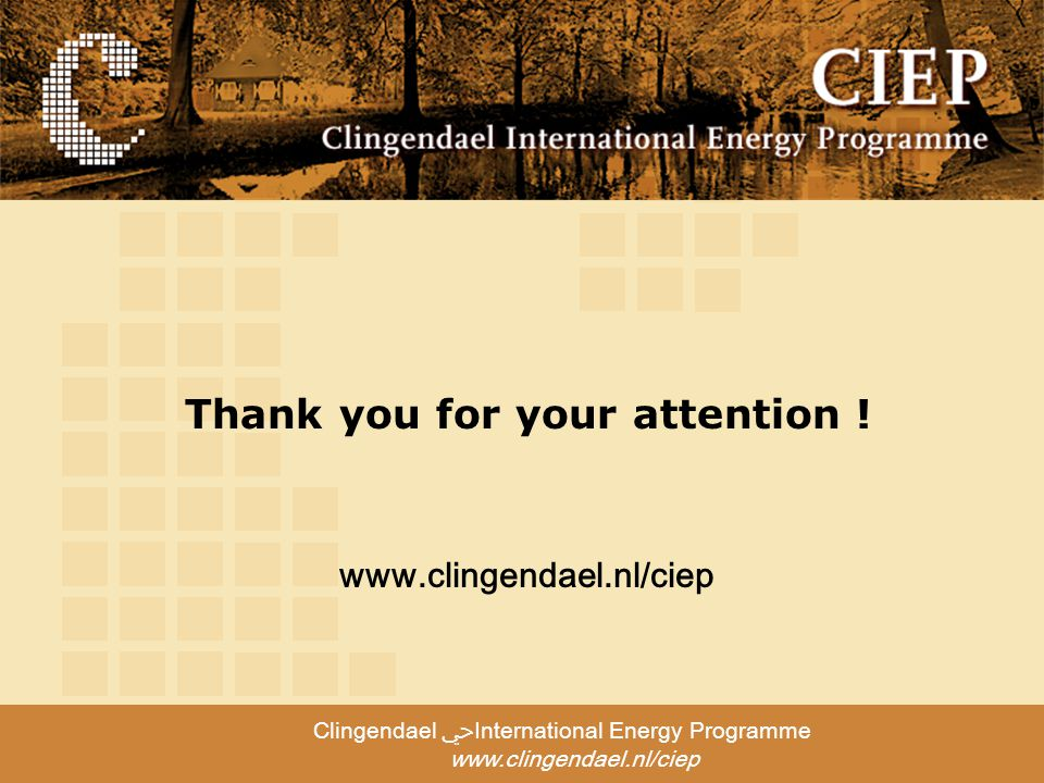 Clingendael ﴀInternational Energy Programme     Thank you for your attention !