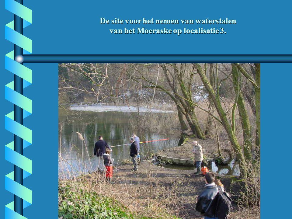 De site voor het nemen van waterstalen van het Moeraske op localisatie 3.