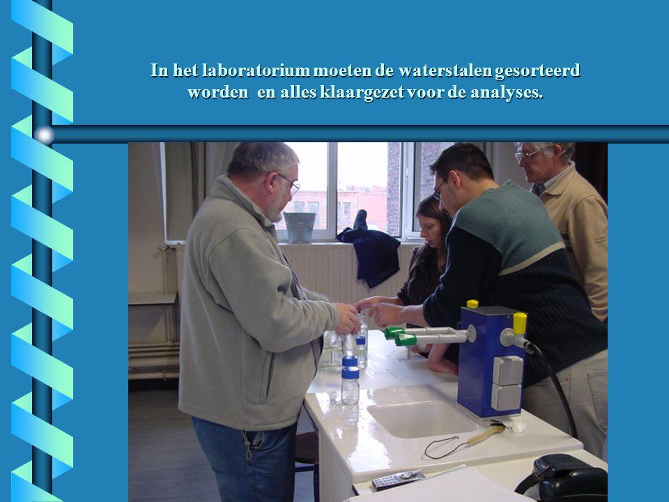 In het laboratorium moeten de waterstalen gesorteerd worden en alles klaargezet voor de analyses.
