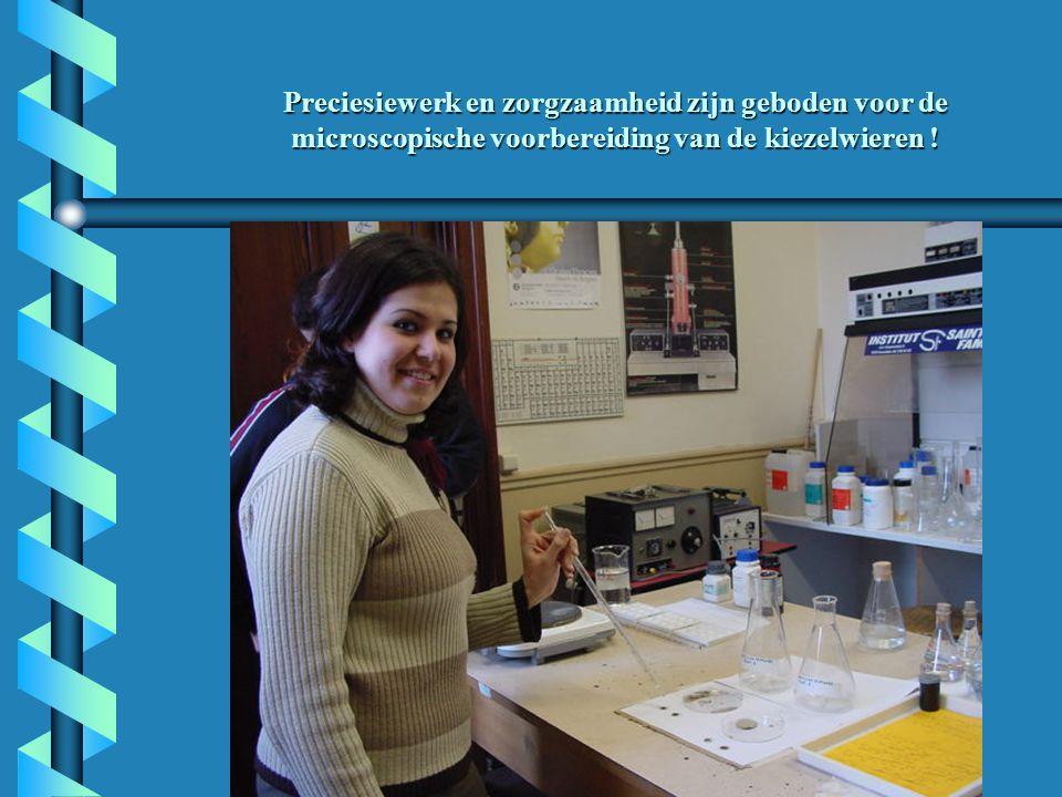 Preciesiewerk en zorgzaamheid zijn geboden voor de microscopische voorbereiding van de kiezelwieren !