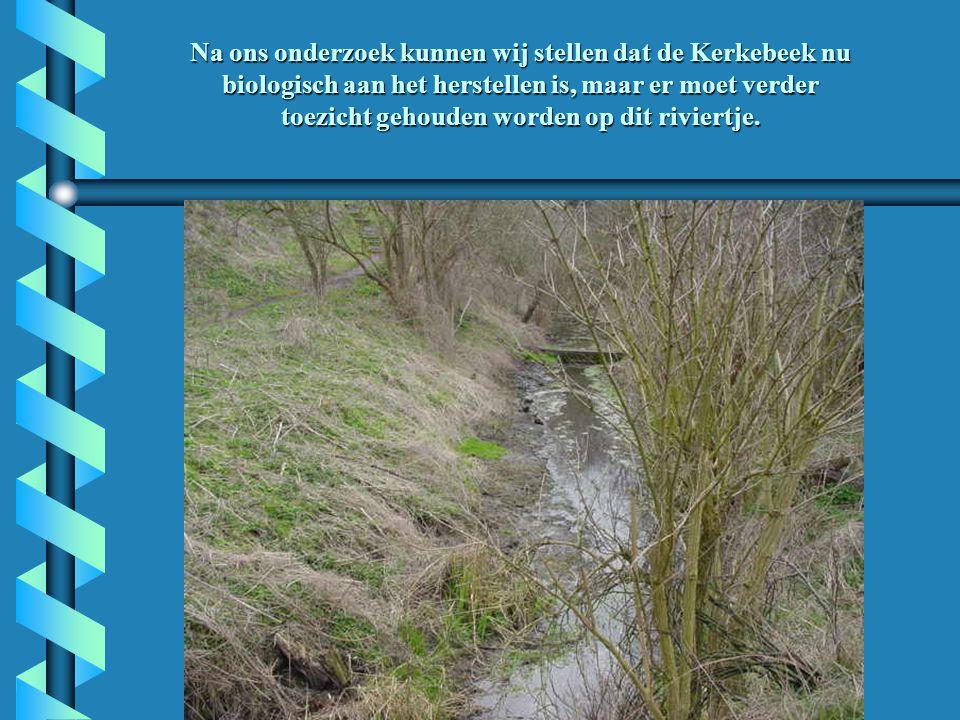 Na ons onderzoek kunnen wij stellen dat de Kerkebeek nu biologisch aan het herstellen is, maar er moet verder toezicht gehouden worden op dit riviertje.