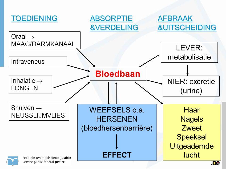 Bloedbaan TOEDIENING LEVER: metabolisatie Haar Nagels Zweet Speeksel Uitgeademde lucht Oraal  MAAG/DARMKANAAL Intraveneus Inhalatie  LONGEN Snuiven