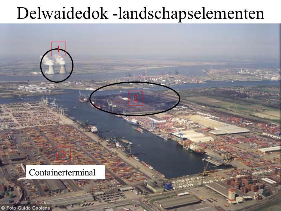 Delwaidedok -landschapselementen 1 2 3 Containerterminal