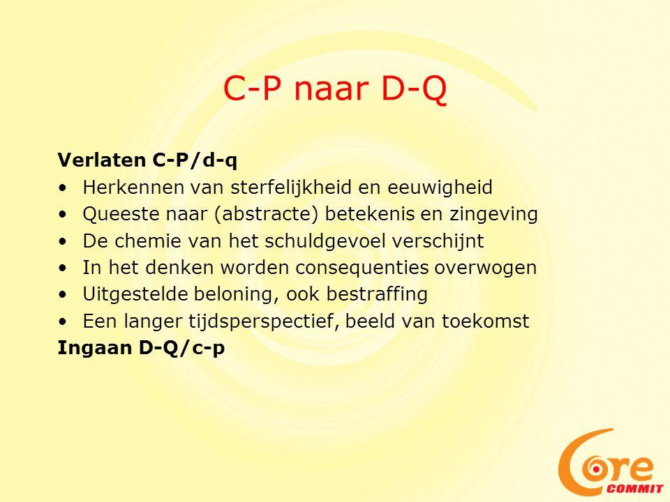 C-P naar D-Q Verlaten C-P/d-q Herkennen van sterfelijkheid en eeuwigheid Queeste naar (abstracte) betekenis en zingeving De chemie van het schuldgevoe