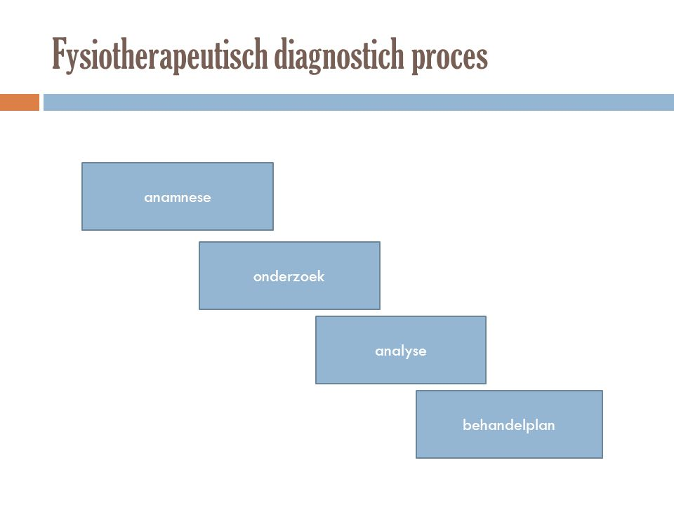 Fysiotherapeutisch diagnostich proces anamnese onderzoek analyse behandelplan