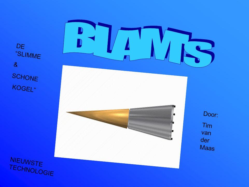 Blam's Door: Tim van der Maas