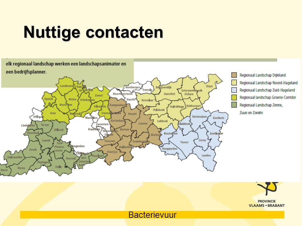 Bacterievuur Nuttige contacten
