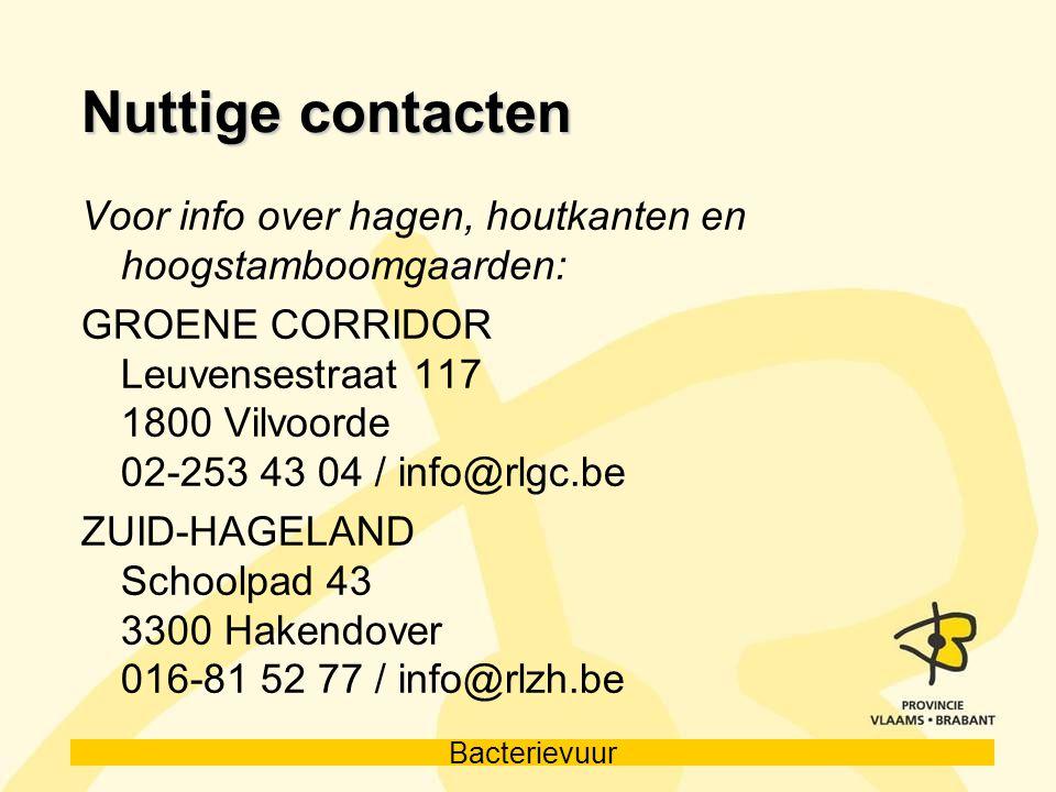 Bacterievuur Nuttige contacten Voor info over hagen, houtkanten en hoogstamboomgaarden: GROENE CORRIDOR Leuvensestraat 117 1800 Vilvoorde 02-253 43 04