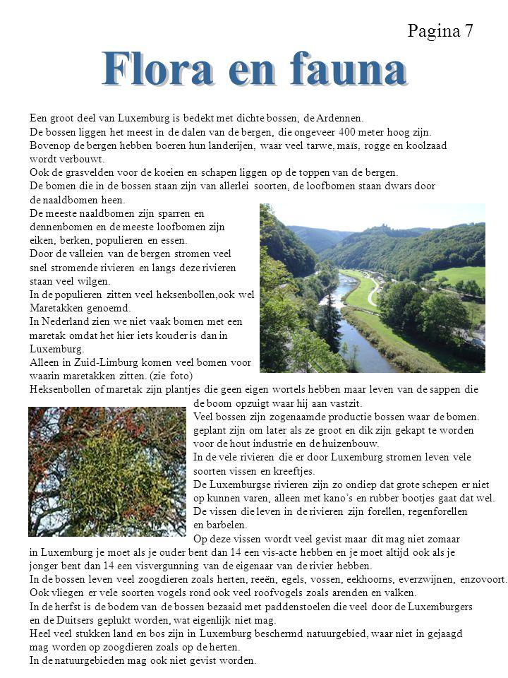 Pagina 7 Een groot deel van Luxemburg is bedekt met dichte bossen, de Ardennen. De bossen liggen het meest in de dalen van de bergen, die ongeveer 400