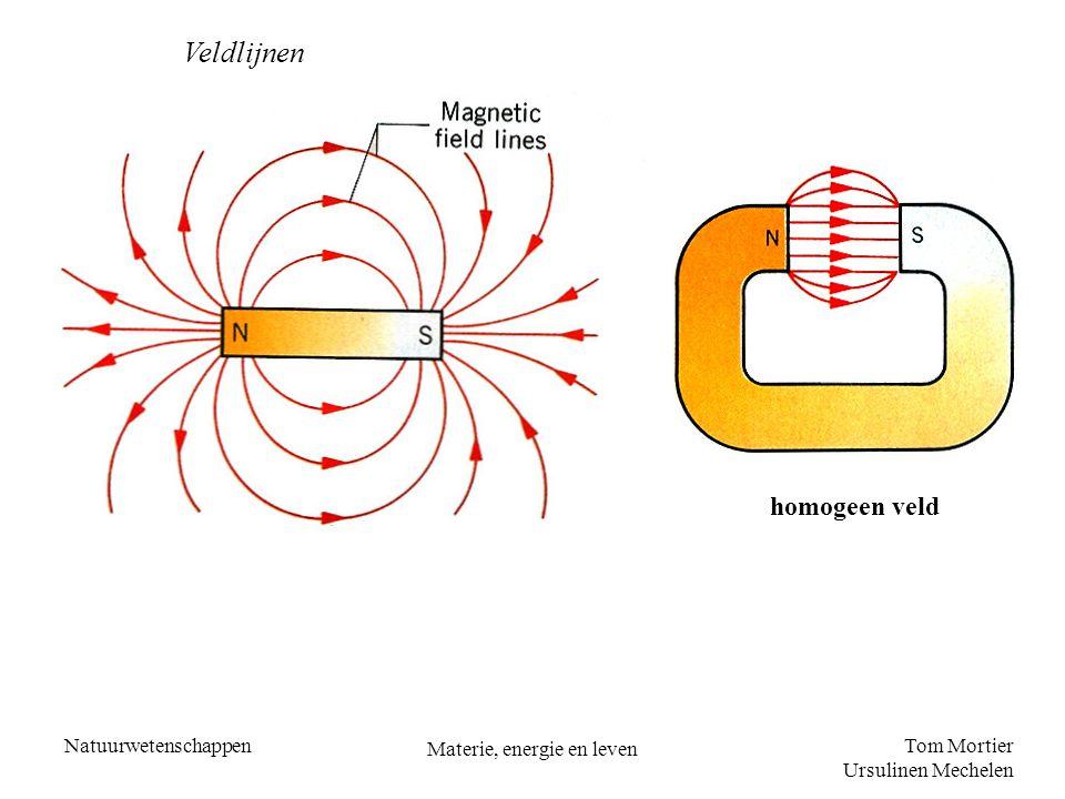 Tom Mortier Ursulinen Mechelen Natuurwetenschappen Materie, energie en leven homogeen veld Veldlijnen