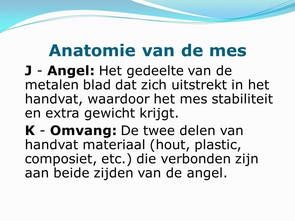Anatomie van de mes J - Angel: Het gedeelte van de metalen blad dat zich uitstrekt in het handvat, waardoor het mes stabiliteit en extra gewicht krijg