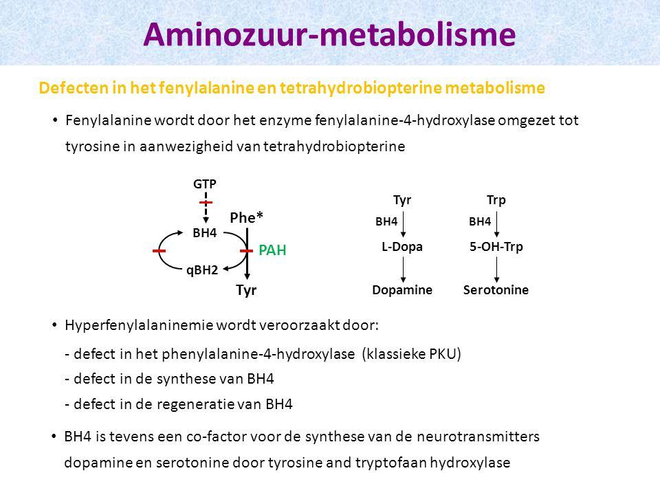 Fenylalanine wordt door het enzyme fenylalanine-4-hydroxylase omgezet tot tyrosine in aanwezigheid van tetrahydrobiopterine Aminozuur-metabolisme Defecten in het fenylalanine en tetrahydrobiopterine metabolisme Phe* Tyr BH4 qBH2 PAH Hyperfenylalaninemie wordt veroorzaakt door: - defect in het phenylalanine-4-hydroxylase (klassieke PKU) - defect in de synthese van BH4 - defect in de regeneratie van BH4 GTP Tyr L-Dopa BH4 Trp 5-OH-Trp BH4 Dopamine Serotonine BH4 is tevens een co-factor voor de synthese van de neurotransmitters dopamine en serotonine door tyrosine and tryptofaan hydroxylase
