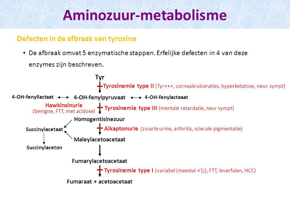 De afbraak omvat 5 enzymatische stappen.Erfelijke defecten in 4 van deze enzymes zijn beschreven.