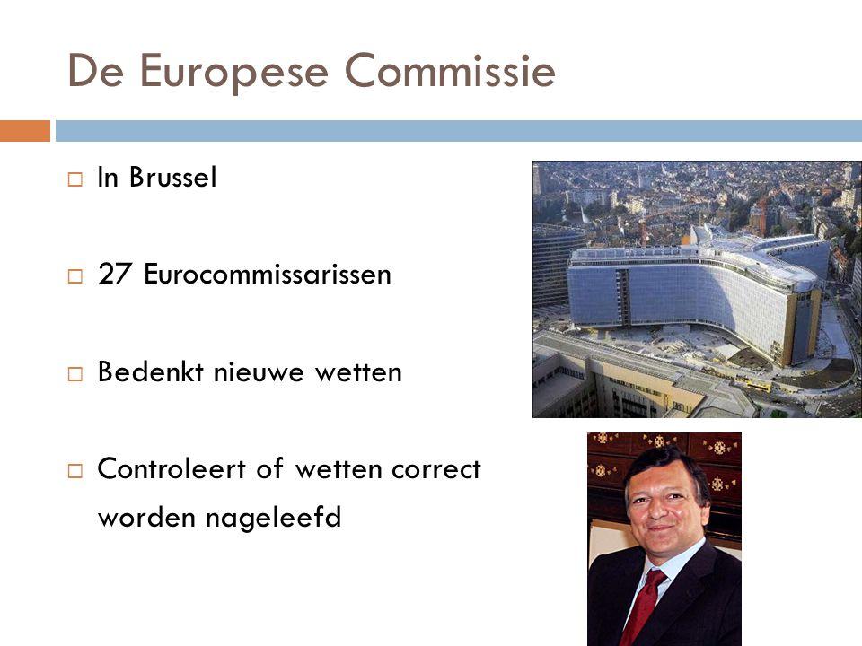 De Europese Commissie  In Brussel  27 Eurocommissarissen  Bedenkt nieuwe wetten  Controleert of wetten correct worden nageleefd