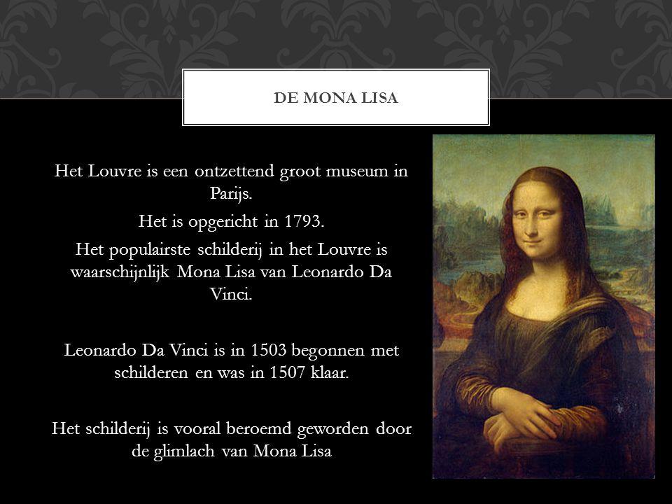 EIGEN MENING Ik had verwacht dat de Mona Lisa best groot zou zijn en spectaculair.
