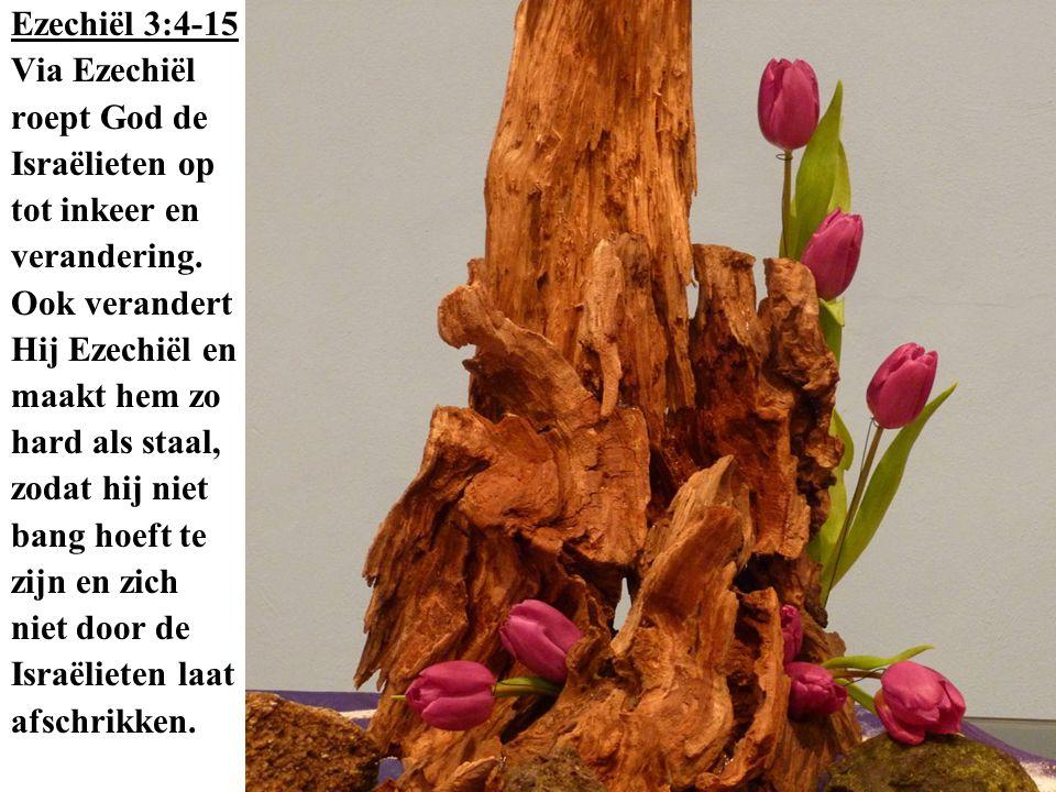 Ezechiël 3:4-15 Via Ezechiël roept God de Israëlieten op tot inkeer en verandering. Ook verandert Hij Ezechiël en maakt hem zo hard als staal, zodat h