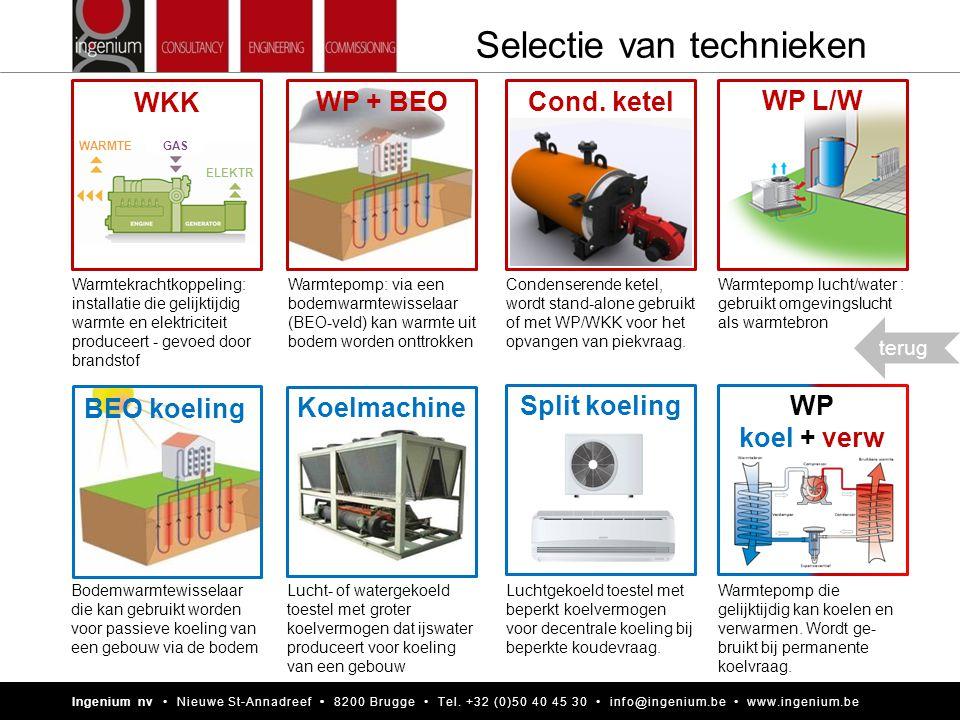 Ingenium nv Nieuwe St-Annadreef 8200 Brugge Tel.