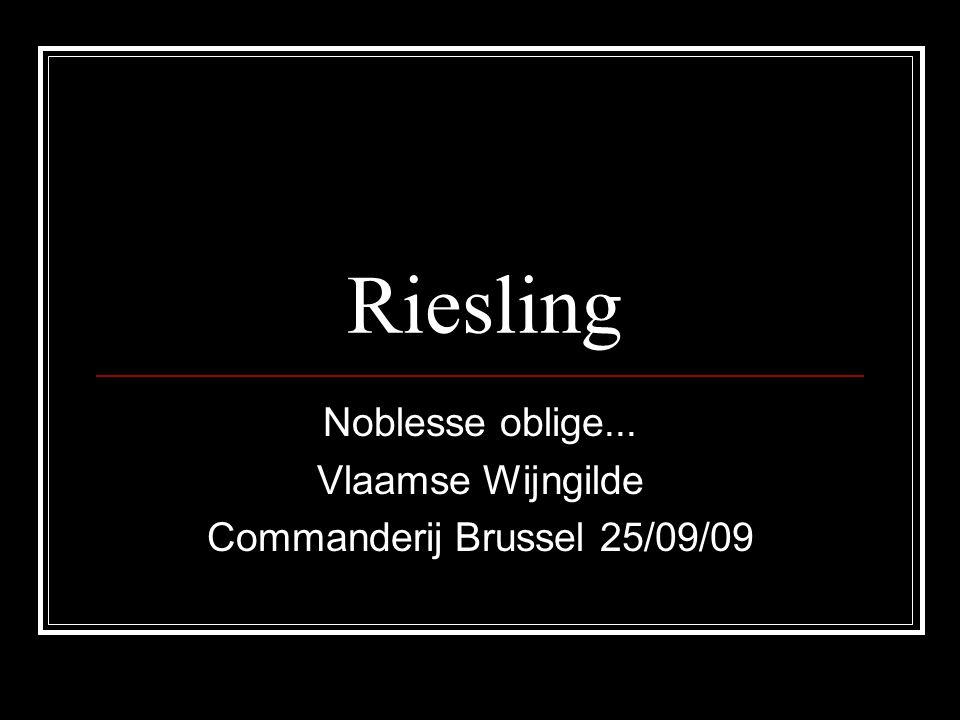 Riesling Noblesse oblige... Vlaamse Wijngilde Commanderij Brussel 25/09/09