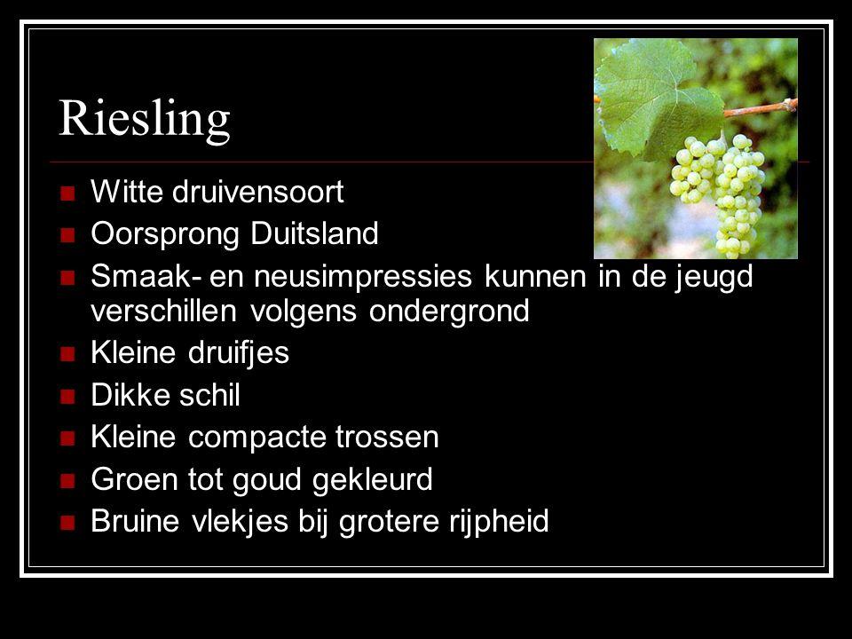 Riesling Witte druivensoort Oorsprong Duitsland Smaak- en neusimpressies kunnen in de jeugd verschillen volgens ondergrond Kleine druifjes Dikke schil