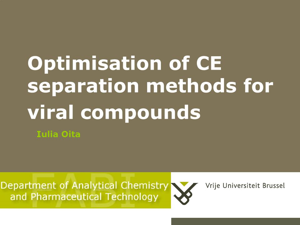 Optimisation of CE separation methods for viral compounds Iulia Oita