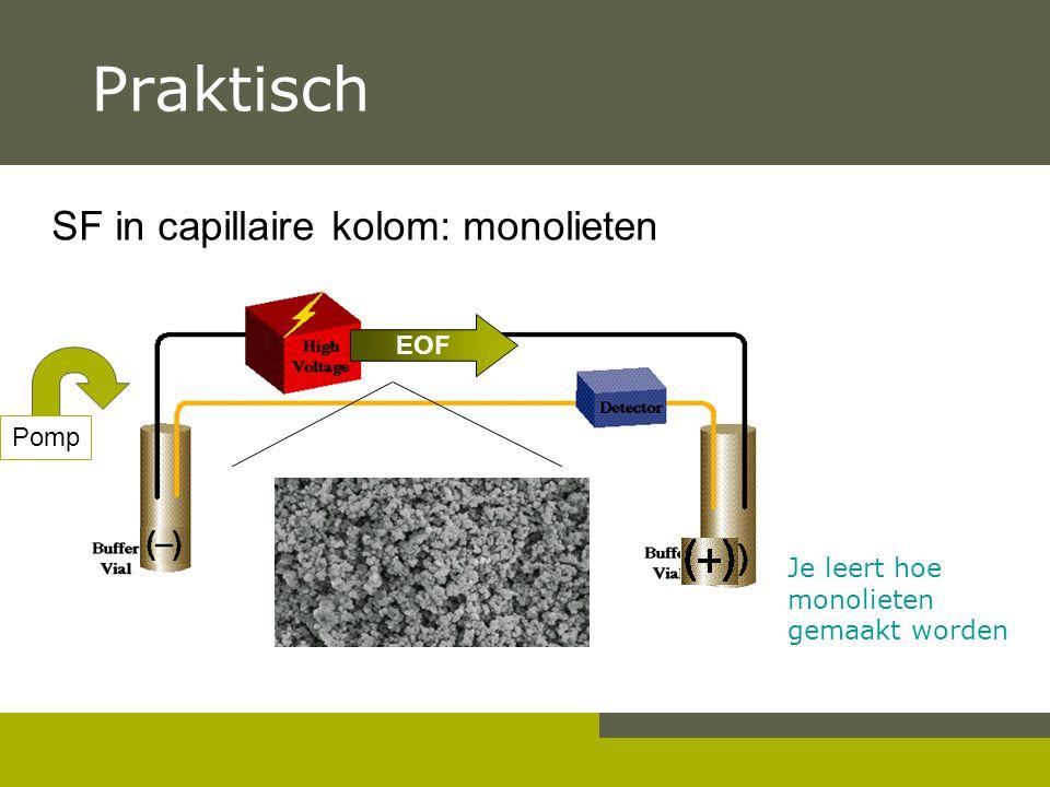 Praktisch SF in capillaire kolom: monolieten Je leert hoe monolieten gemaakt worden EOF Pomp