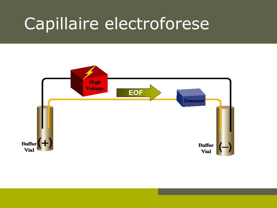 Capillaire electroforese EOF