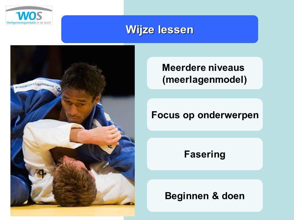 Wijze lessen Meerdere niveaus (meerlagenmodel) Focus op onderwerpen Beginnen & doen Fasering