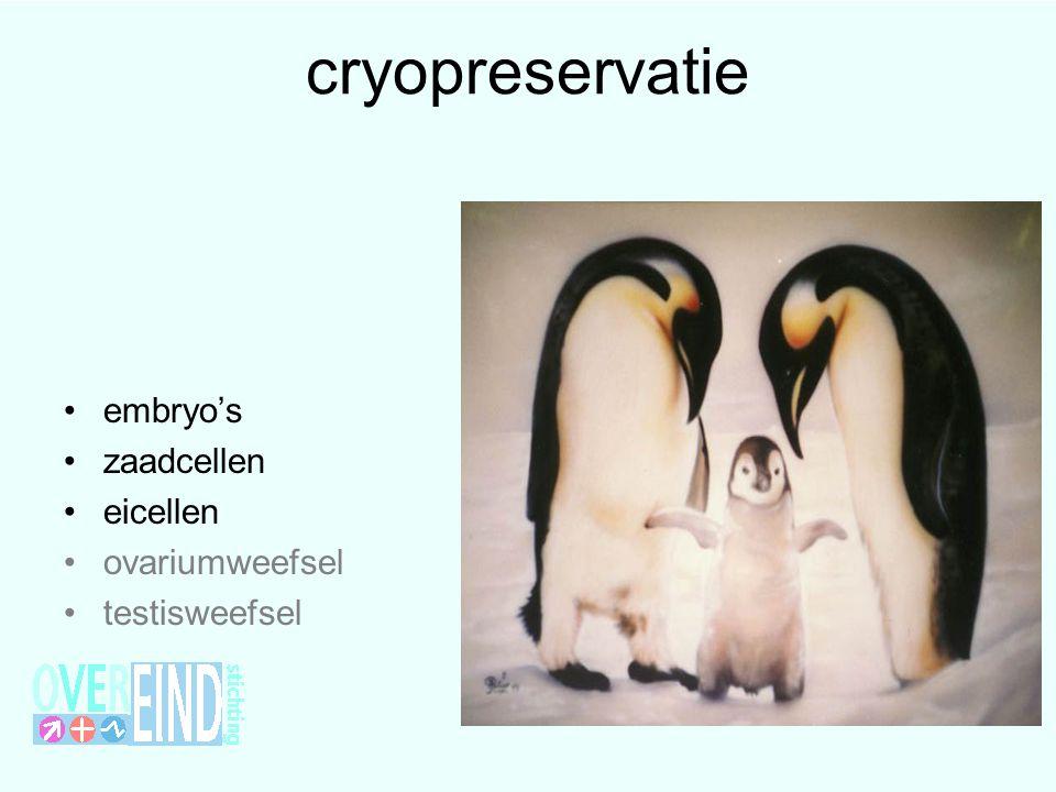 cryopreservatie embryo's zaadcellen eicellen ovariumweefsel testisweefsel