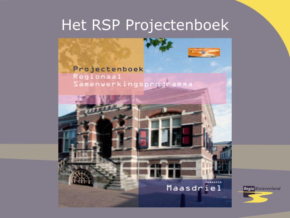 Het RSP Projectenboek
