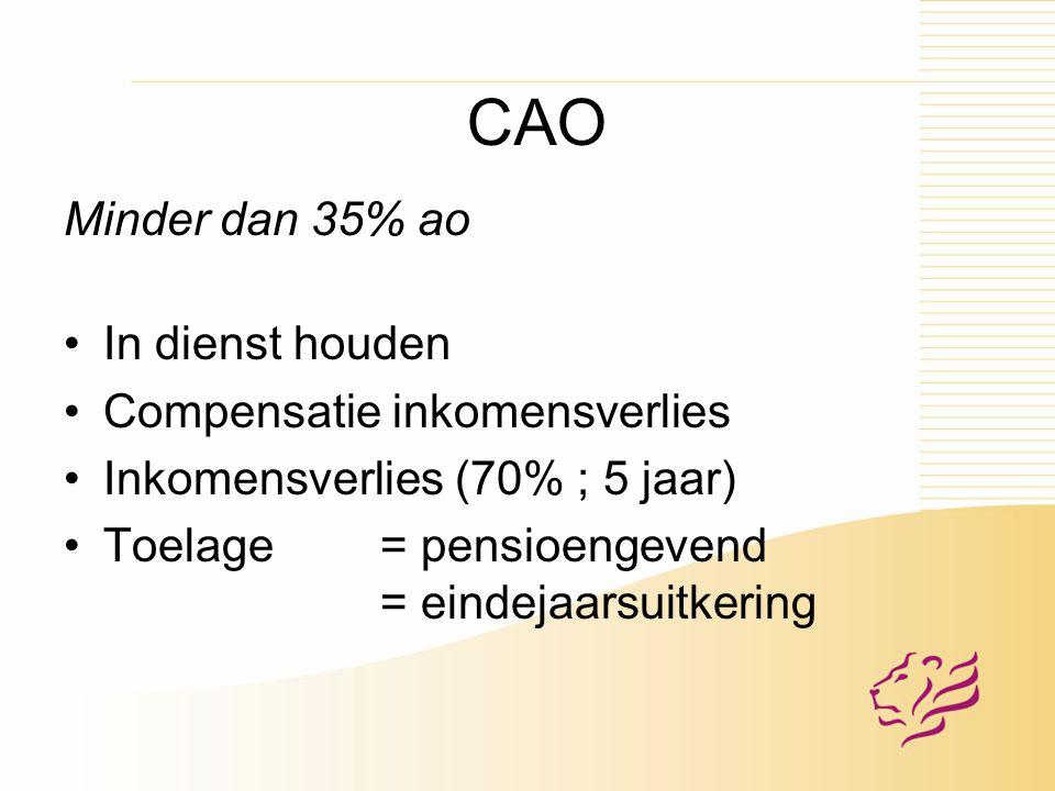 CAO Minder dan 35% ao In dienst houden Compensatie inkomensverlies Inkomensverlies (70% ; 5 jaar) Toelage = pensioengevend = eindejaarsuitkering
