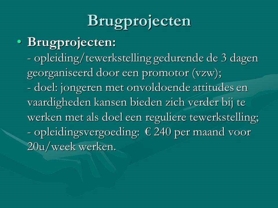 Brugprojecten Brugprojecten: - opleiding/tewerkstelling gedurende de 3 dagen georganiseerd door een promotor (vzw); - doel: jongeren met onvoldoende a