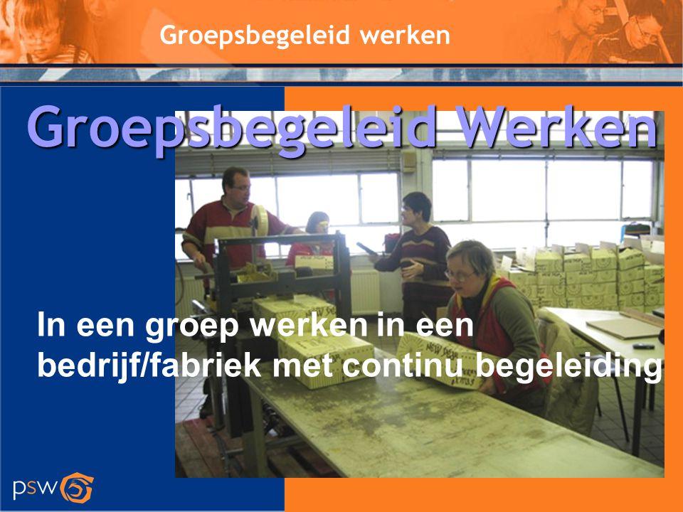 Groepsbegeleid werken In een groep werken in een bedrijf/fabriek met continu begeleiding Groepsbegeleid Werken