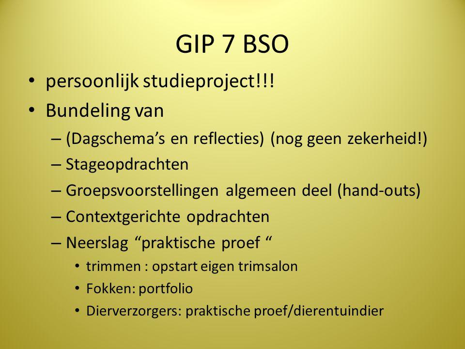 GIP 7 BSO persoonlijk studieproject!!! Bundeling van – (Dagschema's en reflecties) (nog geen zekerheid!) – Stageopdrachten – Groepsvoorstellingen alge
