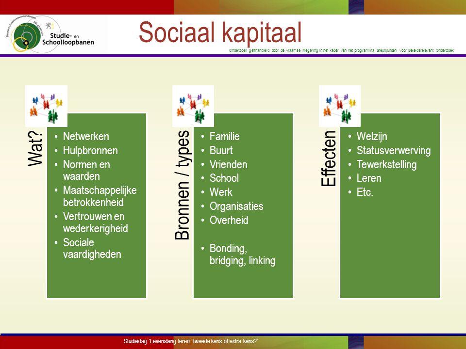 Onderzoek gefinancierd door de Vlaamse Regering in het kader van het programma 'Steunpunten voor Beleidsrelevant Onderzoek' Hoofdvraag  Wat is het effect van levenslang leren op werkgerelateerde uitkomsten en welke rol speelt sociaal kapitaal in deze relatie.