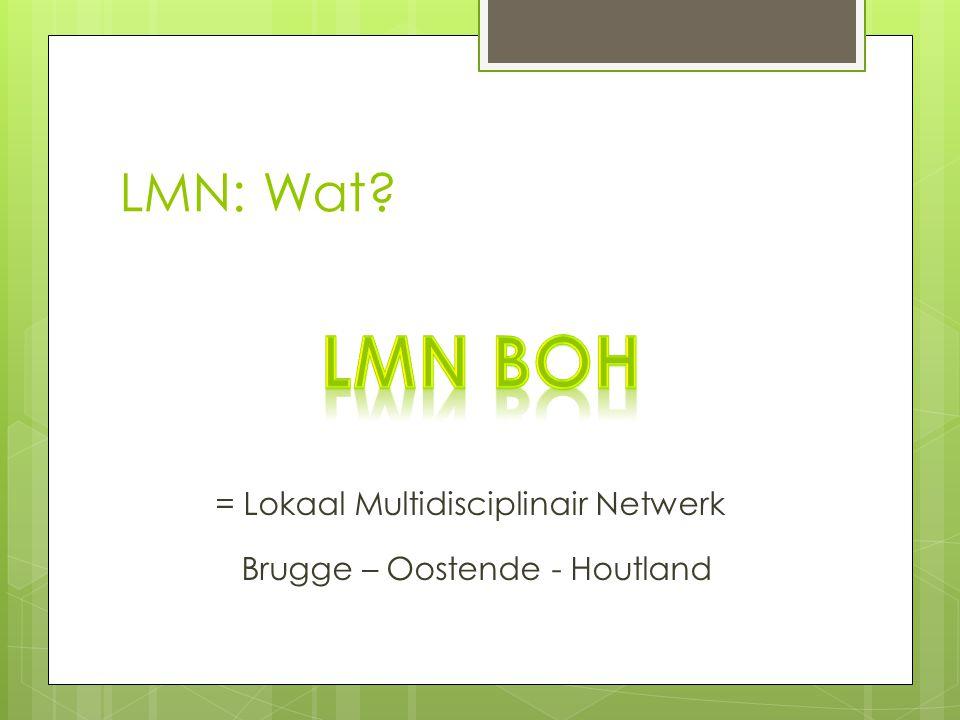 LMN: Wat? = Lokaal Multidisciplinair Netwerk Brugge – Oostende - Houtland