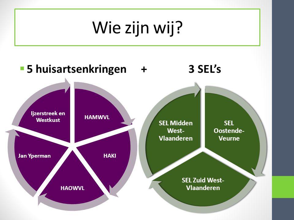 Wie zijn wij?  5 huisartsenkringen + 3 SEL's HAMWVL HAKI HAOWVL Jan Yperman Ijzerstreek en Westkust SEL Oostende- Veurne SEL Zuid West- Vlaanderen SE