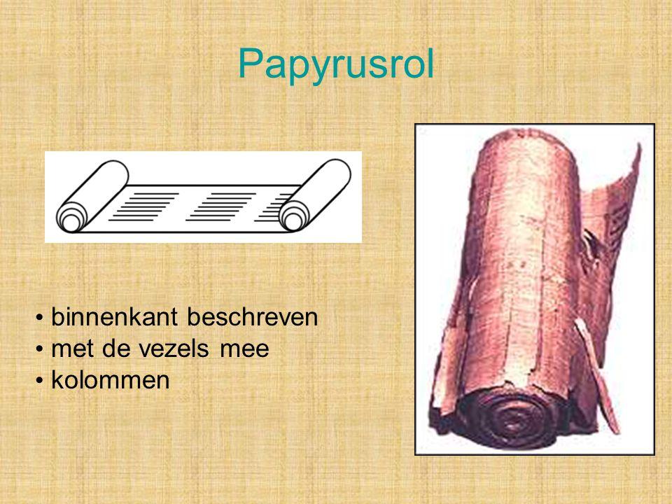 Codex Later ook boekvorm = codex (Papyrus Bodmer 66, Evangelie Johannes, ca. 200 na Chr.)
