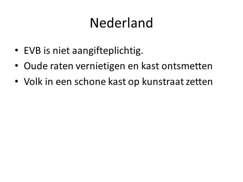 Nederland EVB is niet aangifteplichtig. Oude raten vernietigen en kast ontsmetten Volk in een schone kast op kunstraat zetten