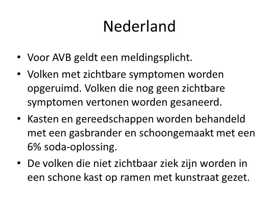 Nederland Voor AVB geldt een meldingsplicht. Volken met zichtbare symptomen worden opgeruimd. Volken die nog geen zichtbare symptomen vertonen worden