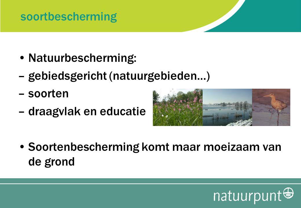 soortbescherming Natuurbescherming: –gebiedsgericht (natuurgebieden…) –soorten –draagvlak en educatie Soortenbescherming komt maar moeizaam van de grond
