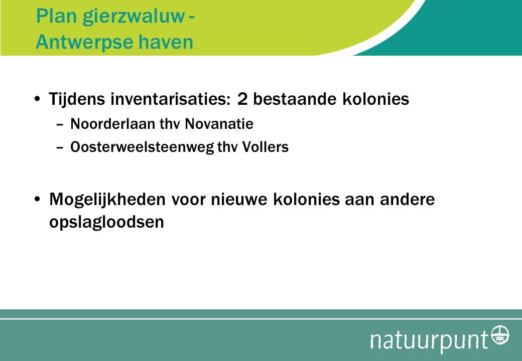 Plan gierzwaluw - Antwerpse haven Tijdens inventarisaties: 2 bestaande kolonies –Noorderlaan thv Novanatie –Oosterweelsteenweg thv Vollers Mogelijkheden voor nieuwe kolonies aan andere opslagloodsen