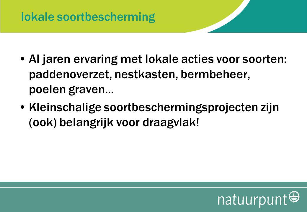 lokale soortbescherming Al jaren ervaring met lokale acties voor soorten: paddenoverzet, nestkasten, bermbeheer, poelen graven...