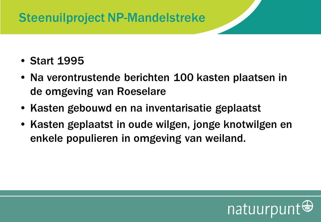 Steenuilproject NP-Mandelstreke Start 1995 Na verontrustende berichten 100 kasten plaatsen in de omgeving van Roeselare Kasten gebouwd en na inventarisatie geplaatst Kasten geplaatst in oude wilgen, jonge knotwilgen en enkele populieren in omgeving van weiland.