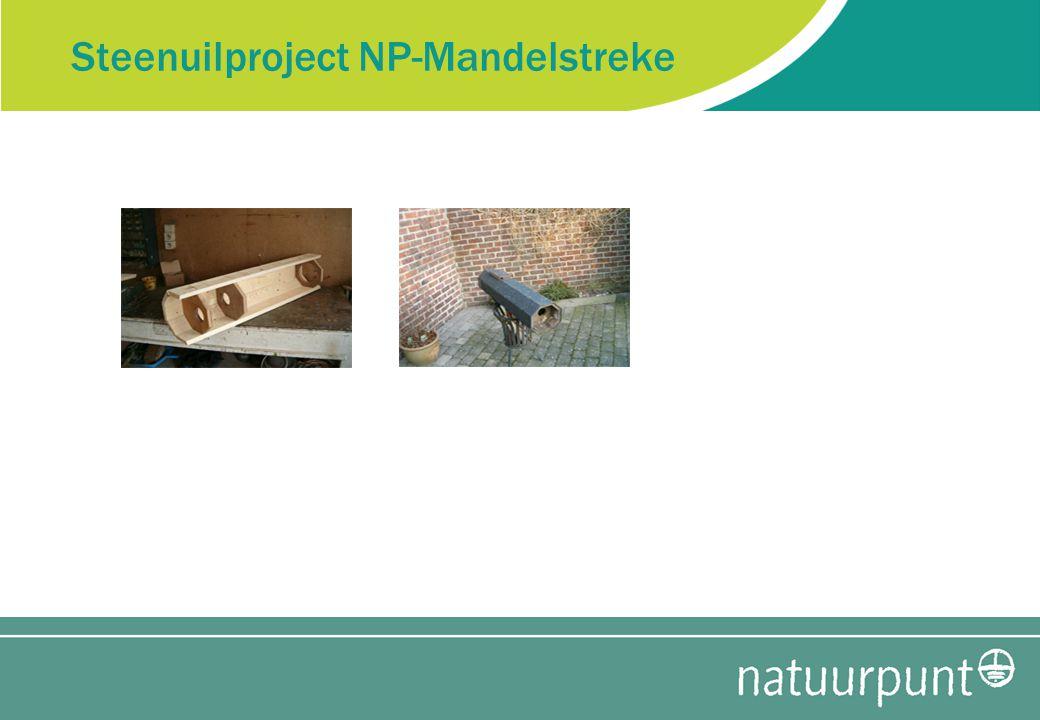 Steenuilproject NP-Mandelstreke