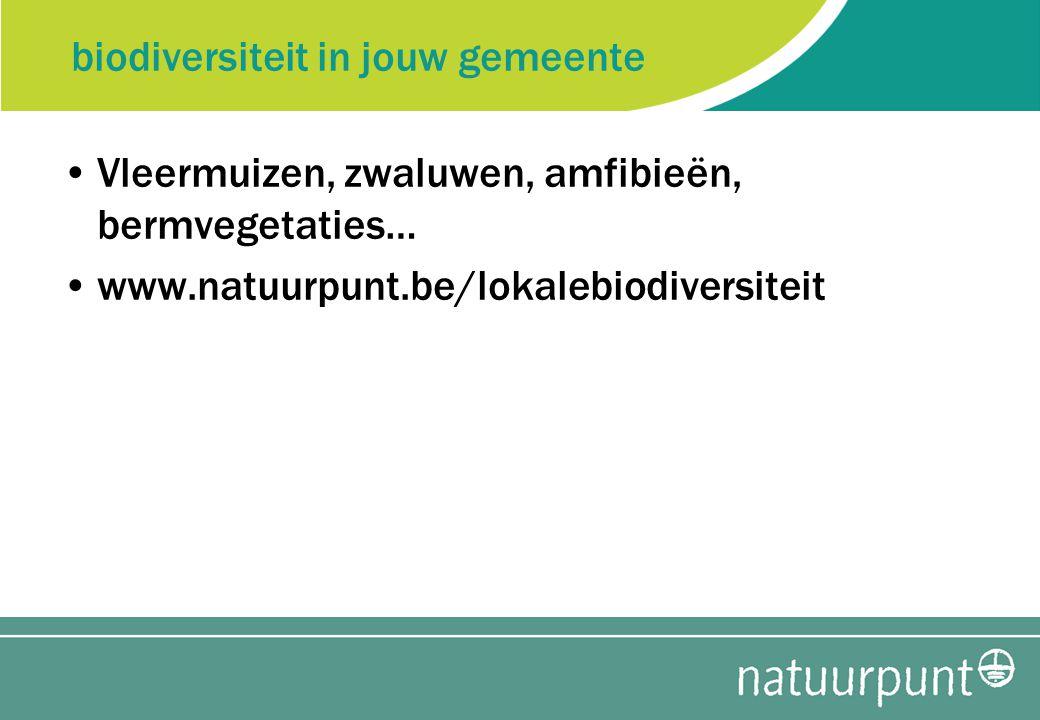 biodiversiteit in jouw gemeente Vleermuizen, zwaluwen, amfibieën, bermvegetaties… www.natuurpunt.be/lokalebiodiversiteit