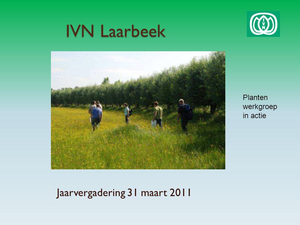 IVN Laarbeek Jaarvergadering 31 maart 2011 Planten werkgroep in actie