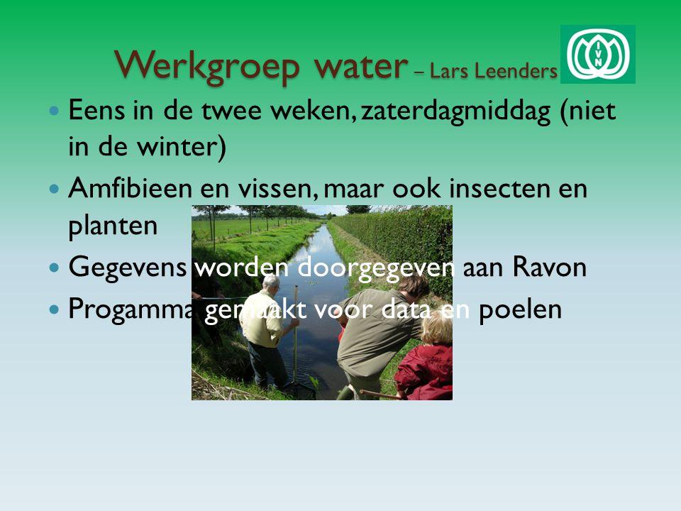 Werkgroep water – Lars Leenders Eens in de twee weken, zaterdagmiddag (niet in de winter) Amfibieen en vissen, maar ook insecten en planten Gegevens worden doorgegeven aan Ravon Progamma gemaakt voor data en poelen